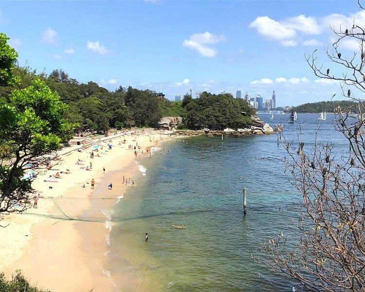 Shark Beach at Nielsen Park