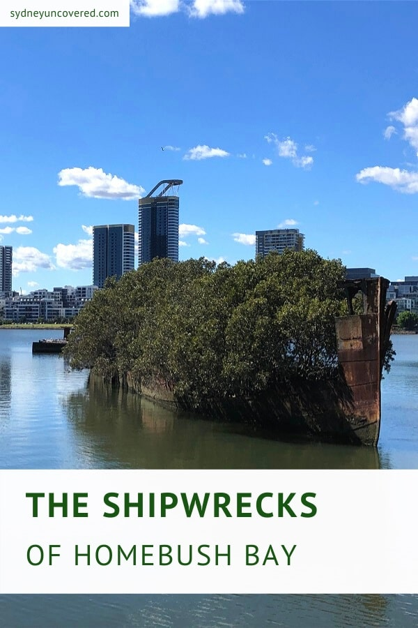 The Homebush Bay shipwrecks