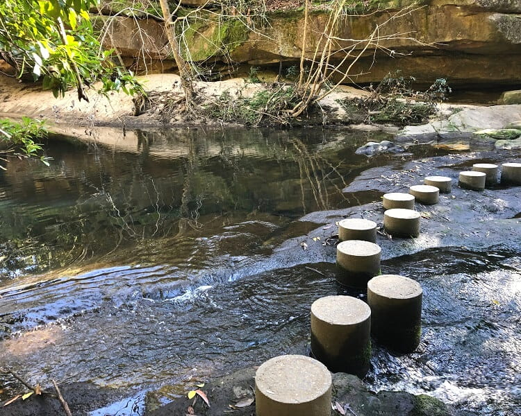 Stepping stones at the Fishponds