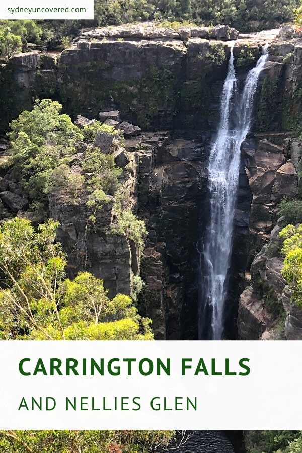 Carrington Falls and Nellies Glen in Budderoo National Park
