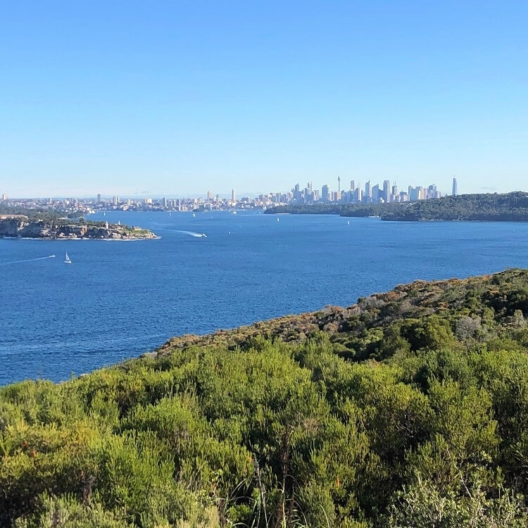 Harbour views from the Fairfax Lookout on North Head