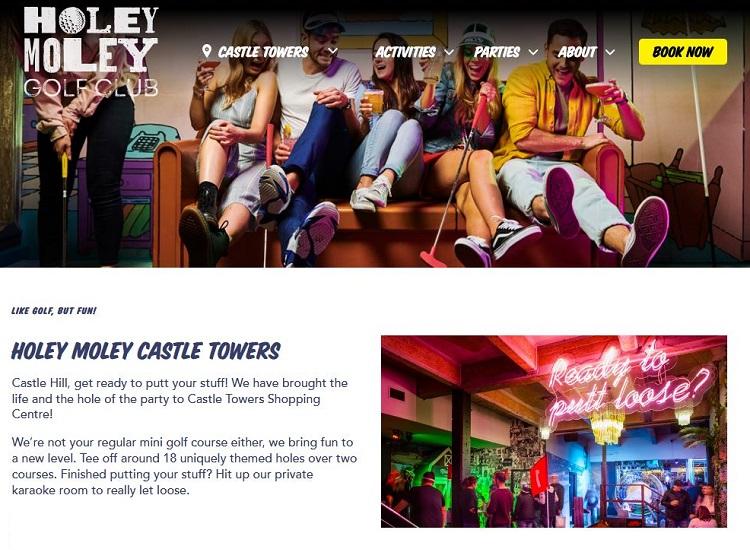 Holey Moley Castle Towers