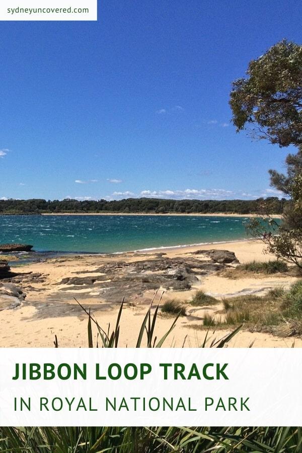 Jibbon Beach Loop Track in Royal National Park