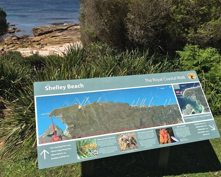 Shelley Beach in Royal National Park