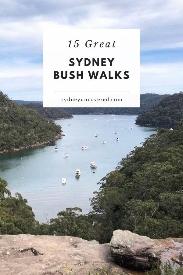 15 Best Sydney bush walks