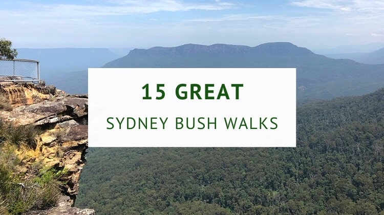 Bush walks in Sydney
