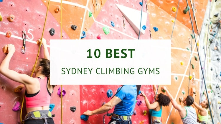 Indoor rock climbing and bouldering gyms in Sydney