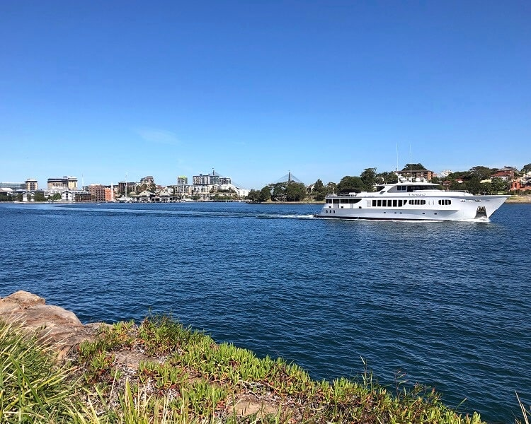 Scenic Harbour views from Barangaroo Reserve