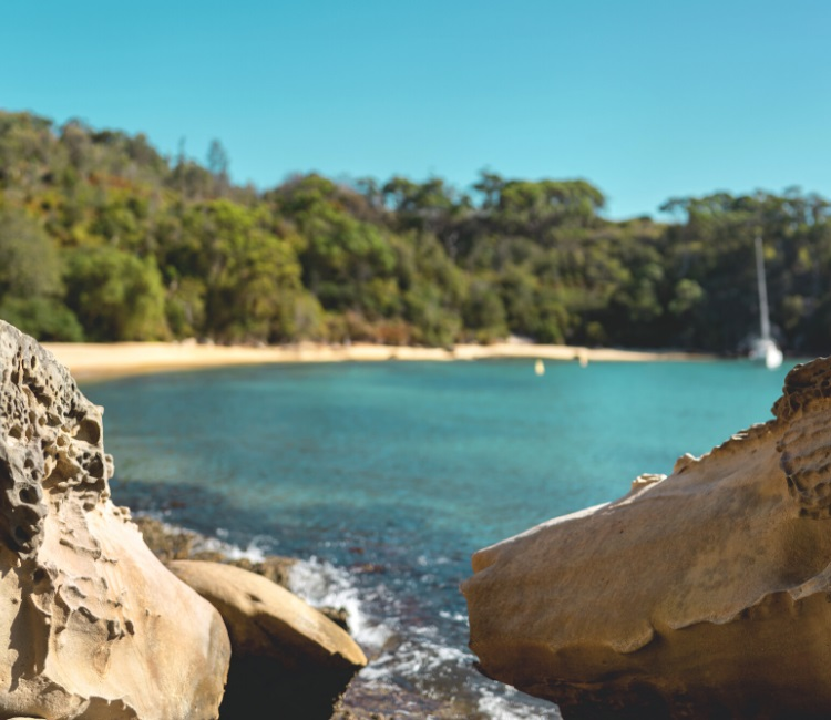 Store Beach in Manly
