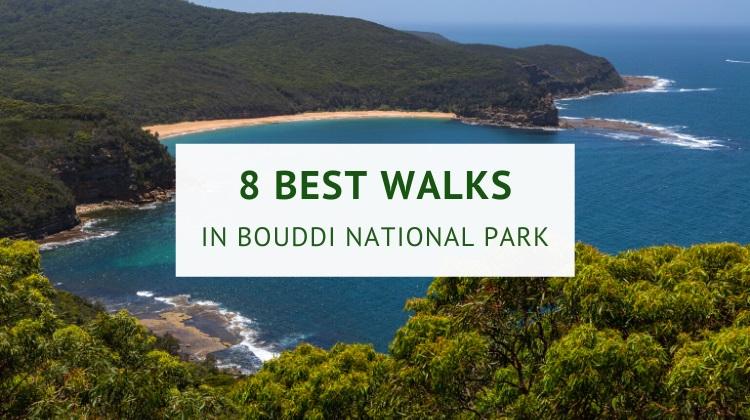 Walks in Bouddi National Park